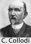 Carlo Andreea
